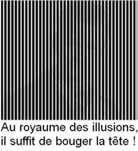 Philippe Parrot : Point de vue n°1 : Authenticité et jeu. dans Pouvoirs et société illusion-274x300