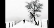 Philippe Parrot : Poème contemporain 65 : Adieux