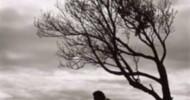 Philippe Parrot : Poème contemporain 160 : Tu verras, ça ira ! Tout s'effilochera…