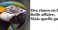Philippe Parrot : Poème contemporain 236 : Des rimes en l'air