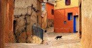 Philippe Parrot : Poème contemporain 442 : Quand chat s'en va…